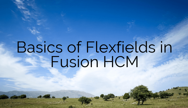 Basics of Flexfields in Fusion HCM