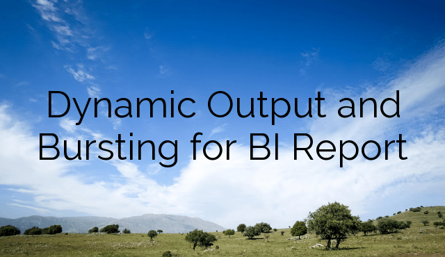 Dynamic Output and Bursting for BI Report