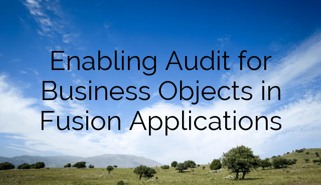 Enabling Audit for Business Objects in Fusion Applications