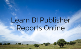 Learn BI Publisher Reports Online