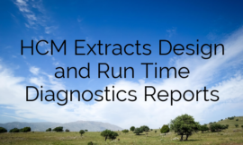 HCM Extracts Design and Run Time Diagnostics Reports