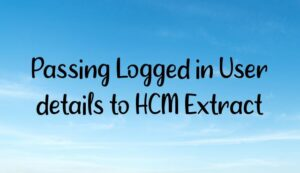 Read more about the article Passing Logged in User details to HCM Extract