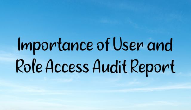 Importance of User and Role Access Audit Report