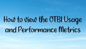 Read more about the article How to view the OTBI Usage and Performance Metrics?