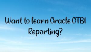 want to learn oracle otbi reporting 300x173 - Homepage